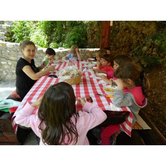Excursie de o zi la Zarnesti