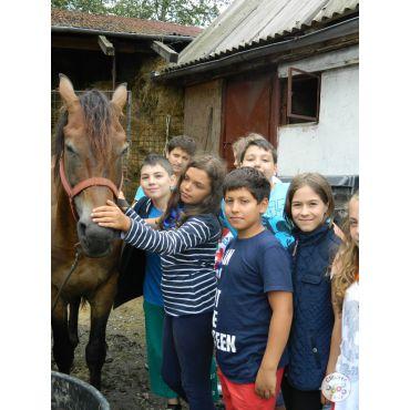 Excursie de 3 zile la Fagaras-Sambata de Sus-Sibiu