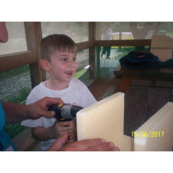 BRICO CAMP - Tabara de bricolaj pentru copii