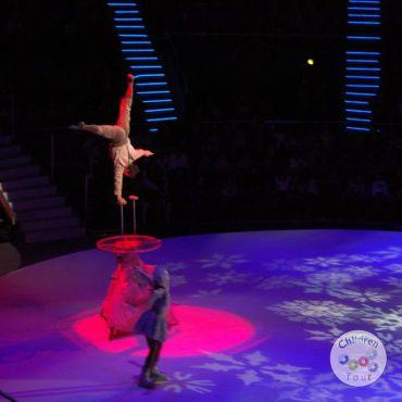 Mai multe despre Vizionare Spectacol la Circ